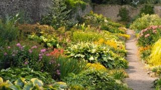Fingal County Council to develop The Shackleton Gardens